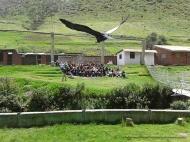 14antuariocochahuasi-com
